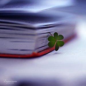 lucky_today_by_lieveheersbeestje-d5fbc9c