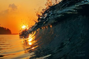 ocean_surfing_wave_at_sunset_time_by_vitaly_sokol-d60in1p
