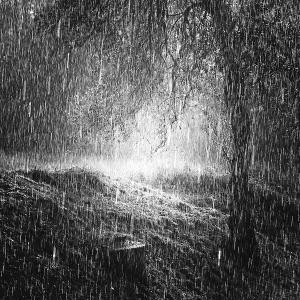 Rain__by_BartoZ