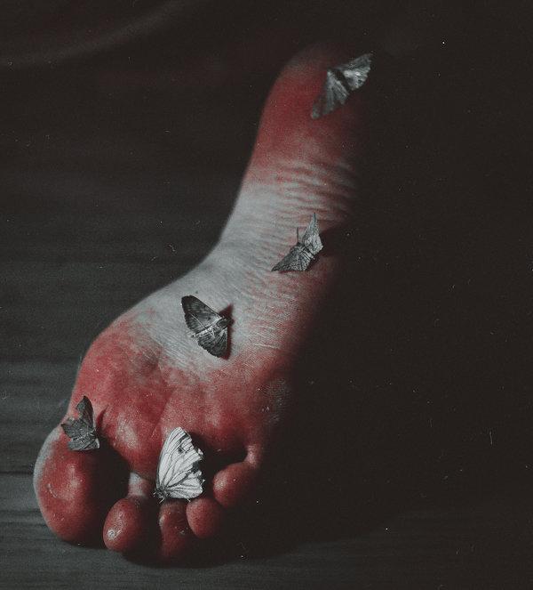 dusty_moths_by_nataliadrepina-d9facna